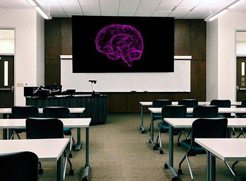 LICCE - Jornada académica en epilepsia