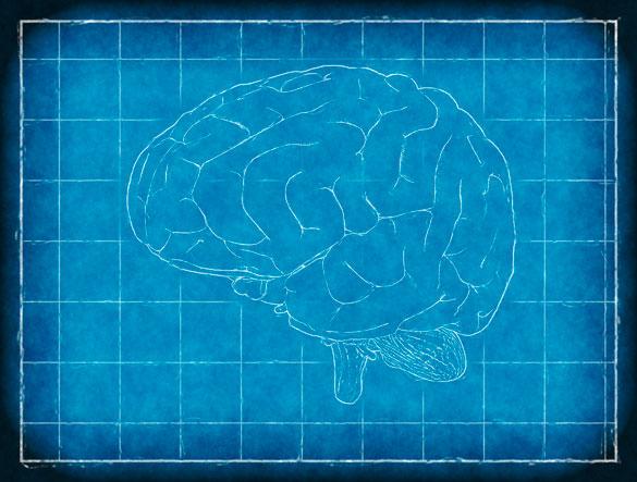 Epilepsia ¿Qué es?